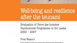 50__well_being_and_resilience_after_the_tsunami___evaluation_of_terre_des_hommes_psyc.jpg