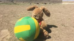 A toy rabbit and a dodgeball in Balochistan, Pakistan